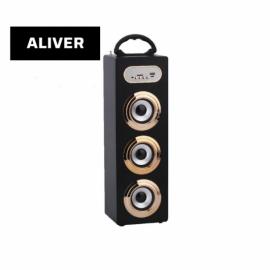 Parlante Portatil Inalambrico 10W USB SD AUX Aliver ALIV06-2